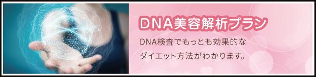 DNA美容解析プラン